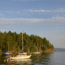 Sailboats in the anchorage, Tent Island, Gulf Islands, British Columbia, Canada