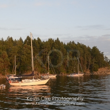 Sailboats at anchor on the west side of Tent Island, , Tent Island, Gulf Islands, British Columbia, Canada