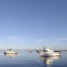 Motor boats at anchor in smooth water at Princess Bay, Portland Island, British Columbia, Canada