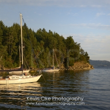 Sailboats at anchor, Tent Island, Gulf Islands, British Columbia, Canada