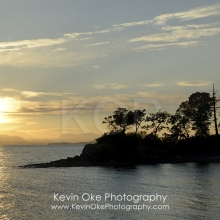 Sunset over Vancouver Island with silhouetted trees, Tent Island, Gulf Islands, British Columbia, Canada